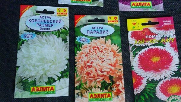 Подбор семян и сорта для посева