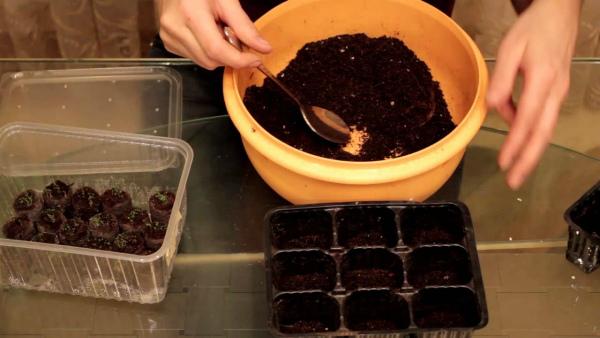 Подготовка грунта и тары