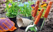 Лунный посевной календарь на апрель 2019 года цветовода, садовода и огородника Таблица