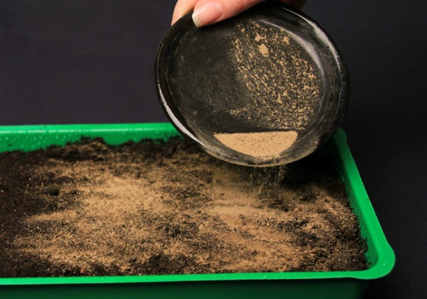 С песком