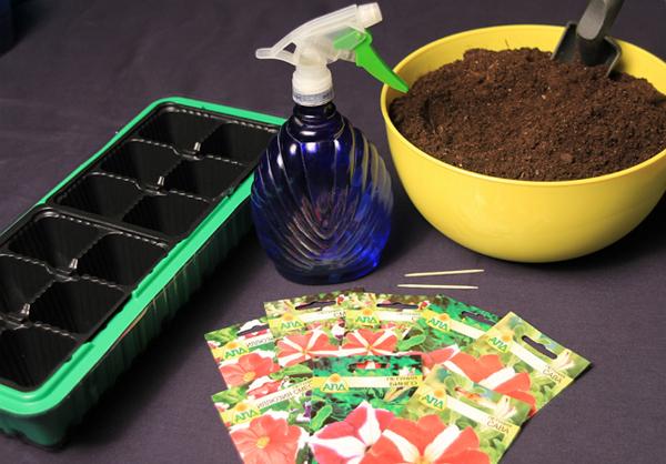 Подготовка грунта и емкости